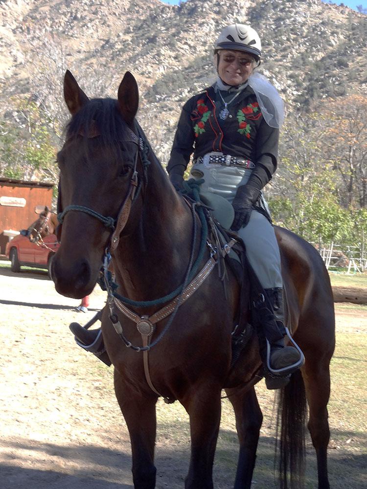 Noble - Omni Equus Success Story